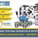 Заработок в интернете от 100 рублей в день с выводом на Киви кошелек в 2017 году: лучшие проекты, отзывы, видеообзоры