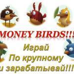 Игра Money Birds — лучшая и самая надежная игра с выводом денег в интернете