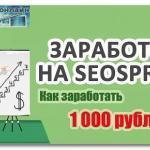 Как заработать на Сеоспринт (Seo sprint) 1000 рублей в день: инструкция, рекомендации, видео