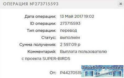 Выплата с игры Super Birds