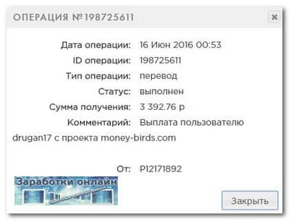 Выплата с игры Money Birds