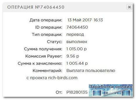 Выплата с игры Rich Birds